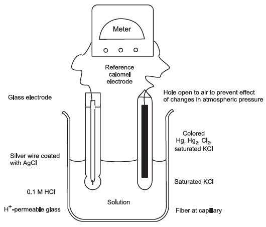 หลักการทำงานของ ph meter