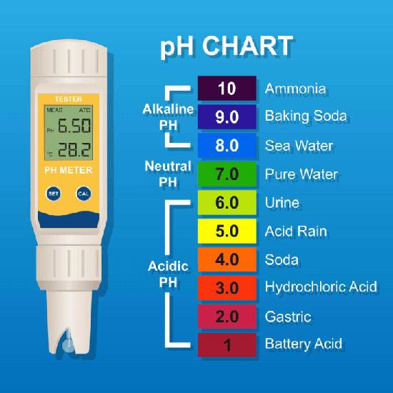 pH Meter ที่เหมาะสมงานไฮโดรโปนิกส์